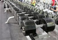 Weights at Genesis Health Club